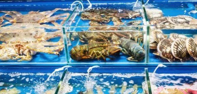 """油炸货有哪些品种_中国进口海鲜市场有哪些""""狠货""""?洋海鲜的""""狠""""折射民众 ..."""